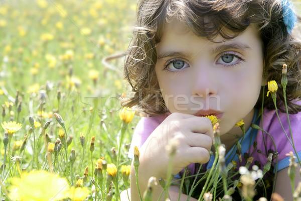 Adorável little girl cheiro flor prado país Foto stock © lunamarina