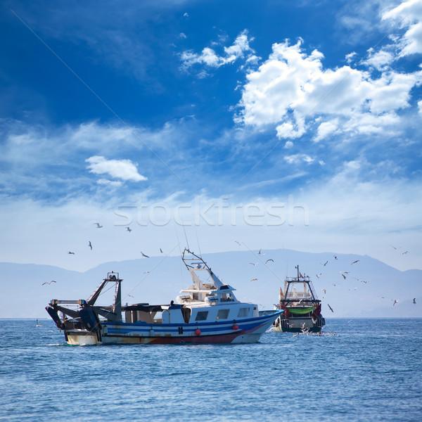 ストックフォト: ボート · カモメ · 水 · 背景 · 夏 · 海