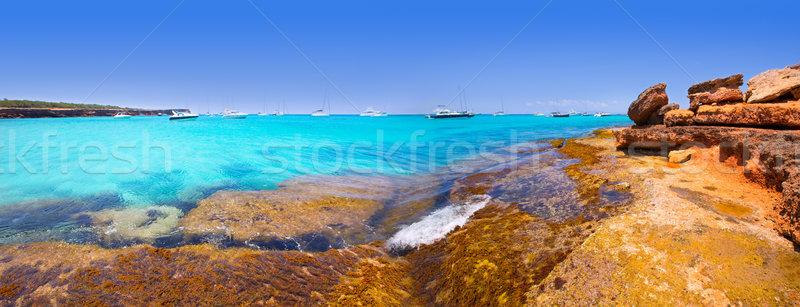Formentera panoramic Cala Saona beach Balearic Islands Stock photo © lunamarina