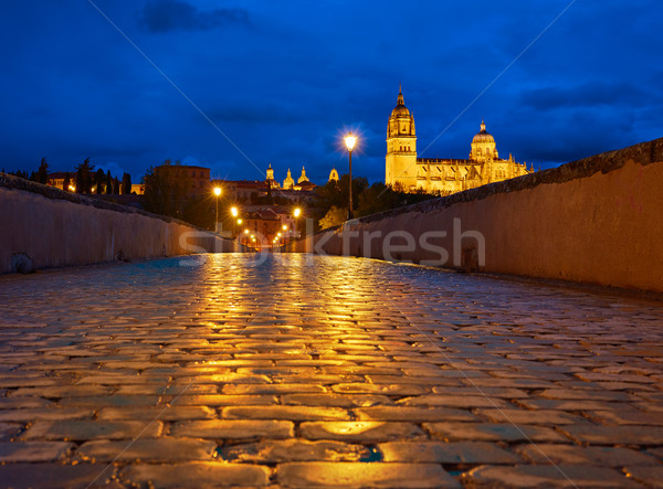 Salamanca sunset in roman bridge Tormes river Stock photo © lunamarina