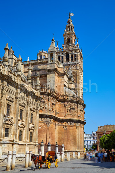 Seville cathedral Giralda tower of Sevilla Stock photo © lunamarina