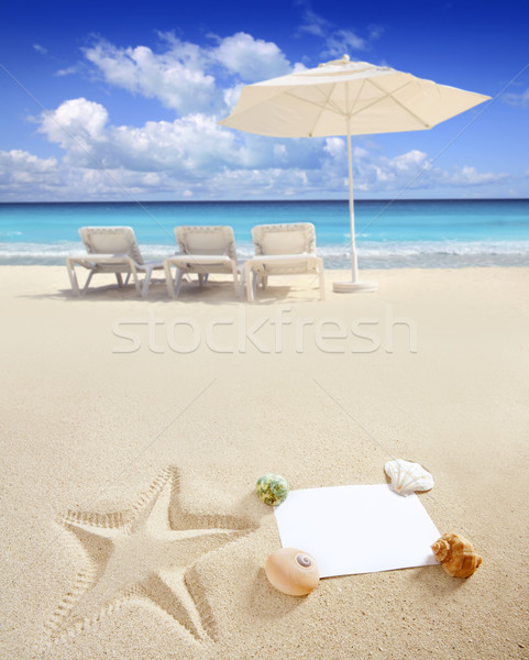 Caribbean beach sea blank copy space starfish shells Stock photo © lunamarina