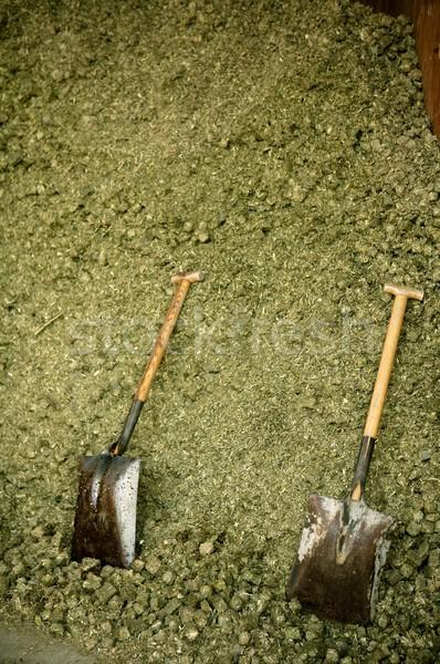 Stock fotó: Kettő · ásó · száraz · lucerna · lovak · étel