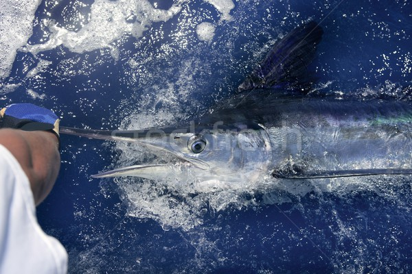 Atlantic white marlin big game sport fishing Stock photo © lunamarina