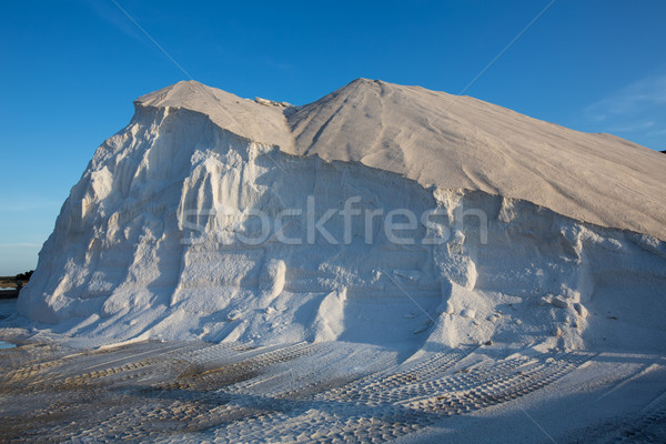 Ibiza ses Salines saltworks white salt mountain Stock photo © lunamarina