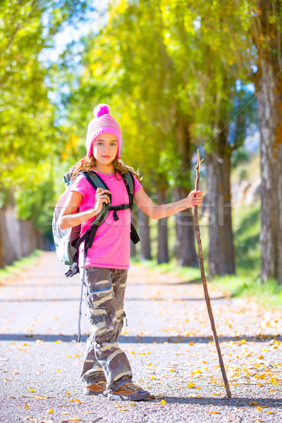 hiking kid girl with walking stick and backpack in autumn Stock photo © lunamarina