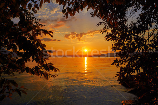 Montreux sunset skyline in Leman Geneva Swiss Stock photo © lunamarina