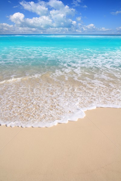 Caribbean turquoise beach perfect sea sunny day Stock photo © lunamarina