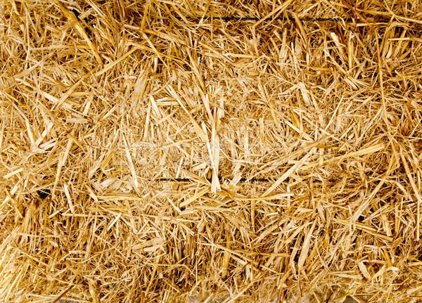 тюк соломы текстуры лет Сток-фото © lunamarina