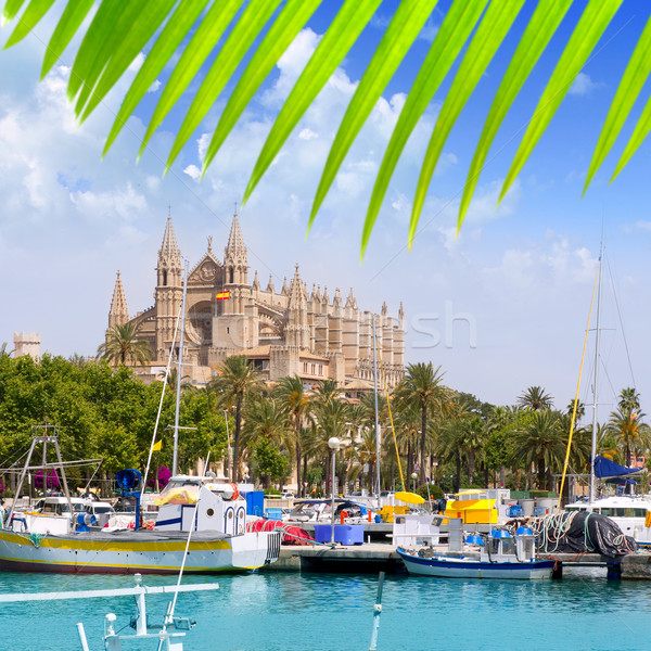 Majorca la Seu cathedral view from marina port of Palma Stock photo © lunamarina