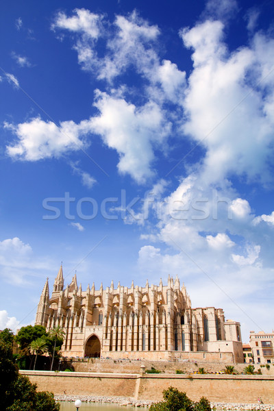 Cathedral of Majorca  La seu from Palma de Mallorca Stock photo © lunamarina