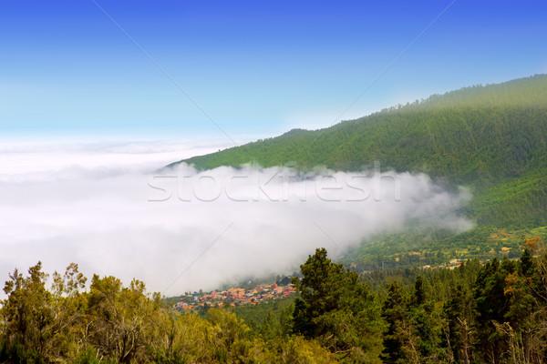 Vadi deniz bulutlar tenerife dağ dağlar Stok fotoğraf © lunamarina