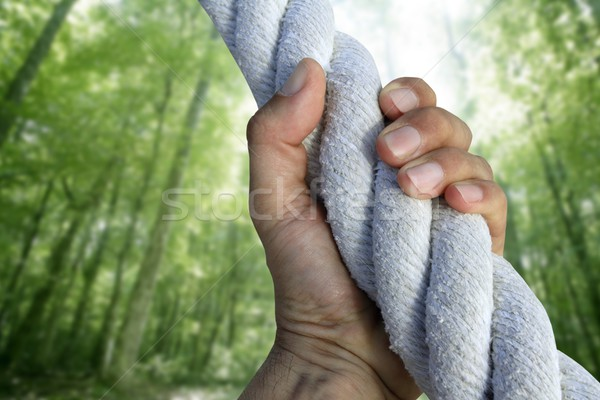 man hand grab grip climbing green forest rope Stock photo © lunamarina