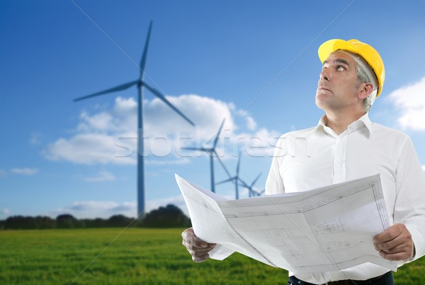 expertise architect senior engineer plan windmill Stock photo © lunamarina