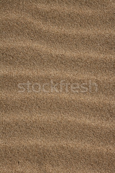 background texture sea coast wind sand waves Stock photo © lunamarina