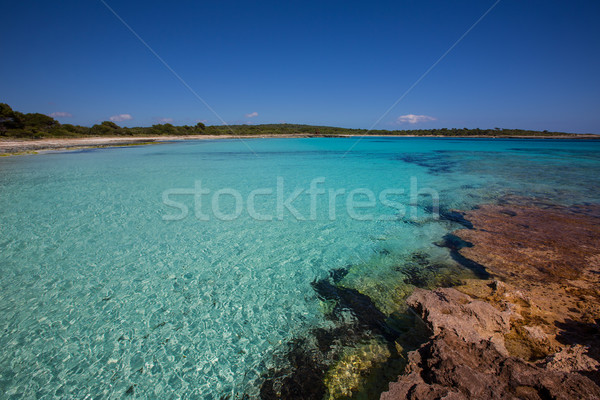 Foto stock: Filho · praia · turquesa · cor · céu · água