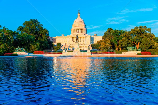 Capitol building Washington DC US congress Stock photo © lunamarina