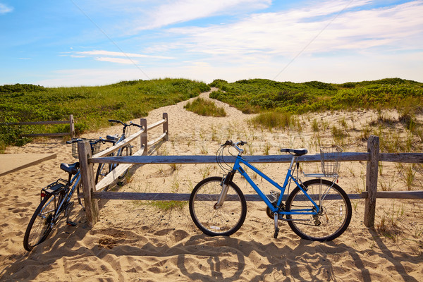 Cape cod praia Massachusetts EUA mar Foto stock © lunamarina