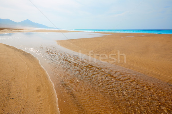 Cofete Fuerteventura beach at Canary Islands Stock photo © lunamarina