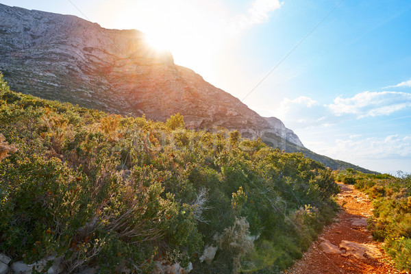 Montgo mountain in Denia Alicante Stock photo © lunamarina