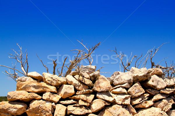 Mediterráneo secado albañilería pared textura Foto stock © lunamarina