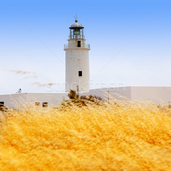 La Mola lighthouse in formentera with golden grass Stock photo © lunamarina
