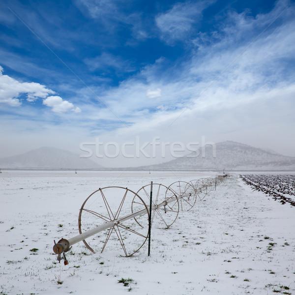 穀物 フィールド かんがい ホイール 雪 ネバダ州 ストックフォト © lunamarina