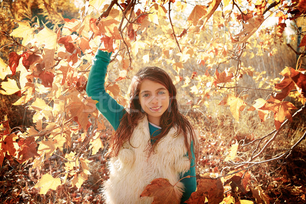 Autumn kid girl relaxed in fall forest  Stock photo © lunamarina