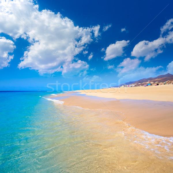 Morro Jable Matorral beach Jandia in Fuerteventura Stock photo © lunamarina