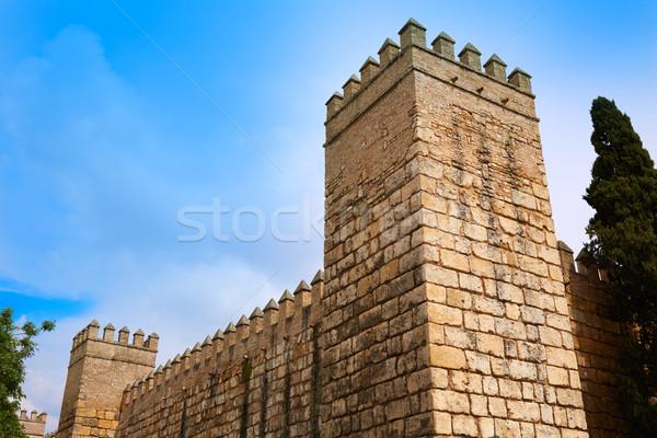 Seville Real Alcazar fortress Sevilla Andalusia Stock photo © lunamarina