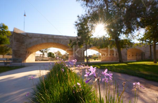 Serrano pont Valence parc Espagne fleurs du printemps Photo stock © lunamarina