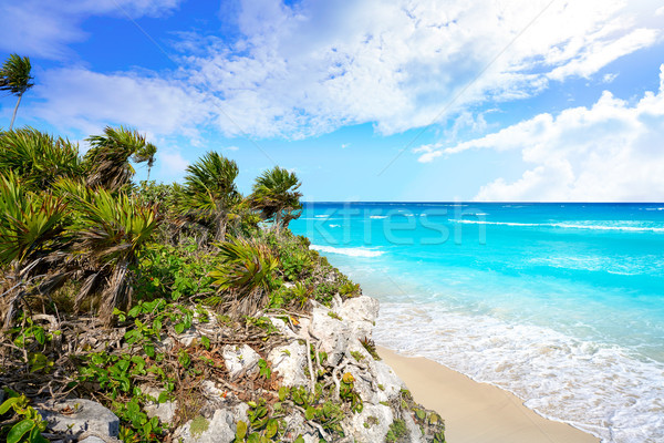 Tulum Mayan city ruins in Riviera Maya at the Caribbean  Stock photo © lunamarina