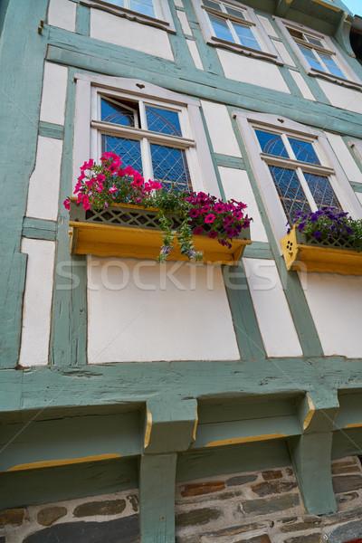 Fleurs montagnes Allemagne ville Voyage architecture Photo stock © lunamarina