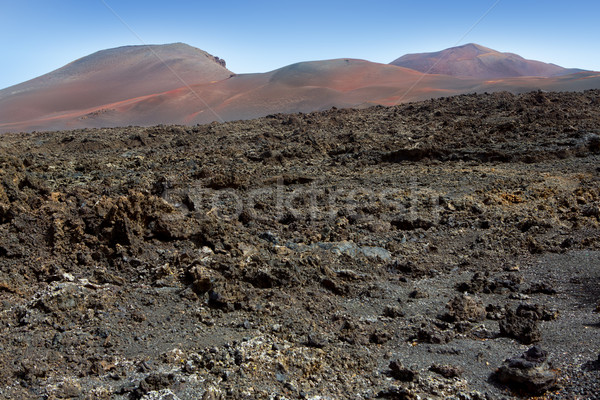 Lanzarote Timanfaya Fire Mountains volcanic lava Stock photo © lunamarina