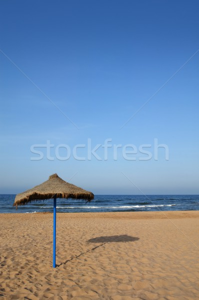 Summer vegetal beach heater wattle umbrella blue sea sky Stock photo © lunamarina