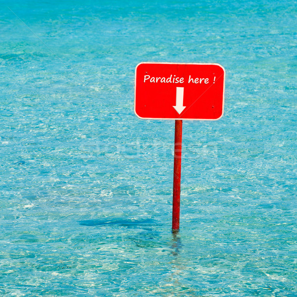 Turkoois tropische zee Rood teken gezegde Stockfoto © lunamarina