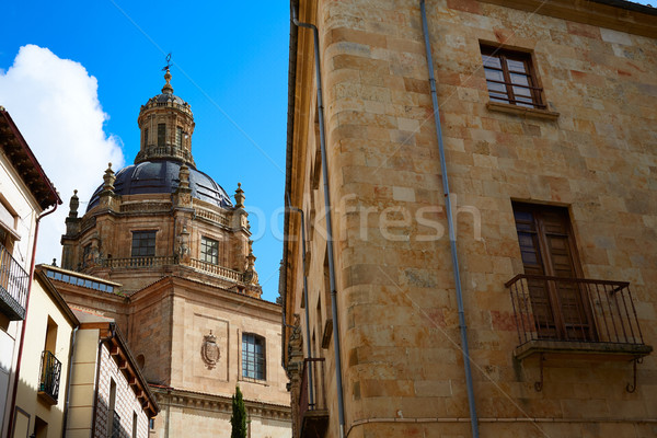 Salamanca university and Clerecia church Spain Stock photo © lunamarina