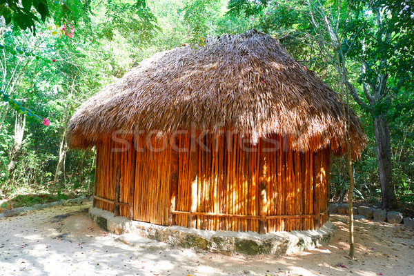Palapa hut traditional cabin in Riviera Maya Stock photo © lunamarina