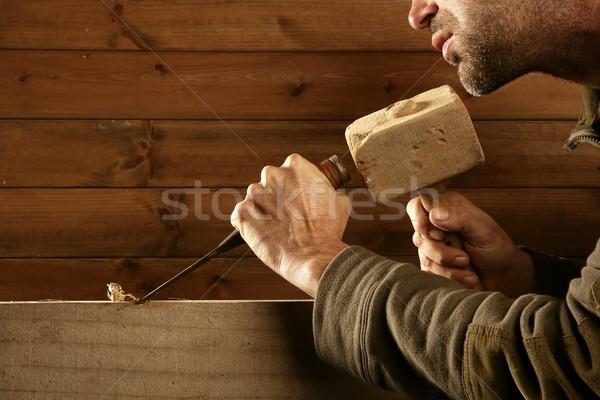 gouge wood chisel carpenter tool hammer hand Stock photo © lunamarina