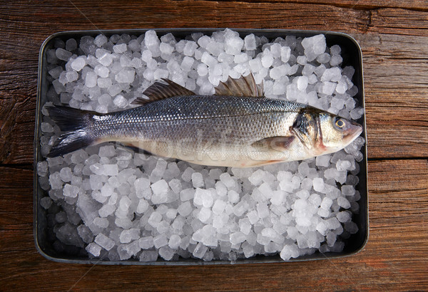 Seabass fresh fish on ice and wood Stock photo © lunamarina