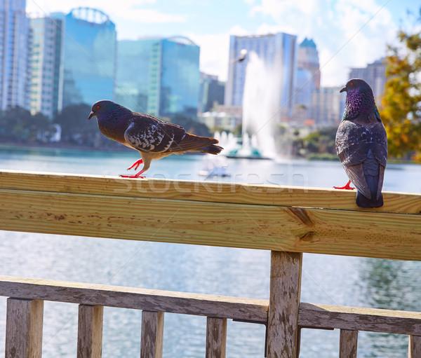 Orlando horizonte lago Florida EUA Foto stock © lunamarina