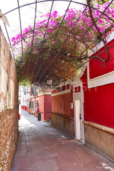Callejon Agua street in Seville Andalusia spain Stock photo © lunamarina