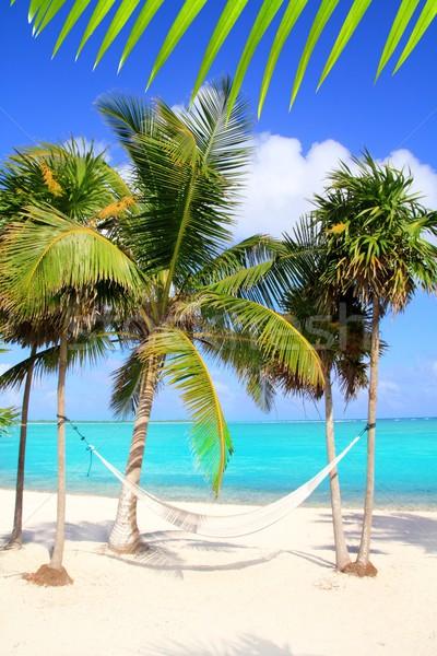 Caribbean sea with swing hammock turquoise beach Stock photo © lunamarina