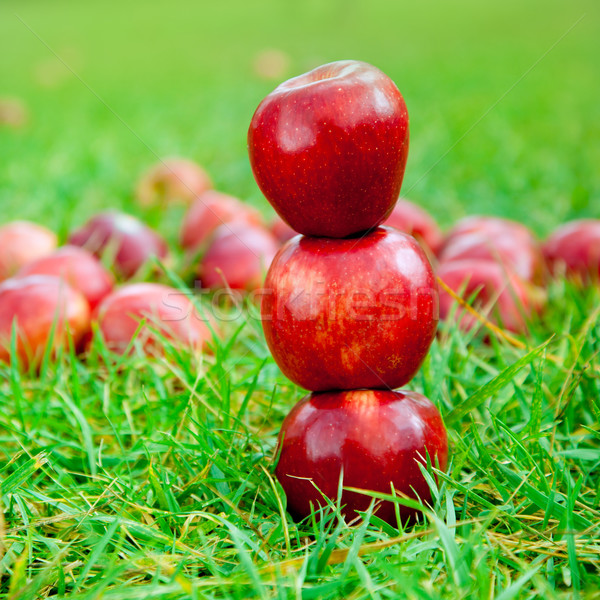 three red apples stacked in grass field Stock photo © lunamarina