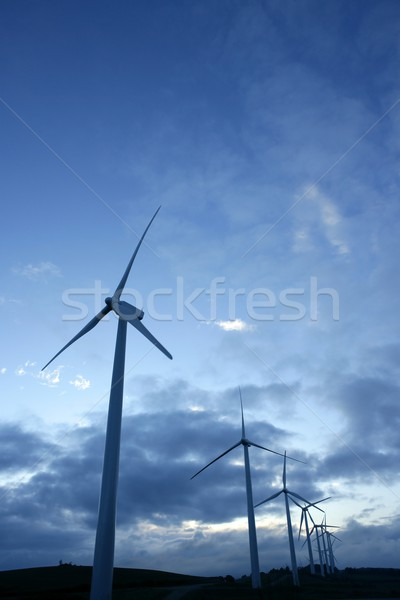 Wind mills aerogenerator, ecological energy Stock photo © lunamarina