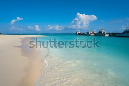 Illetes Illetas island in formentera beach at Balearic Stock photo © lunamarina