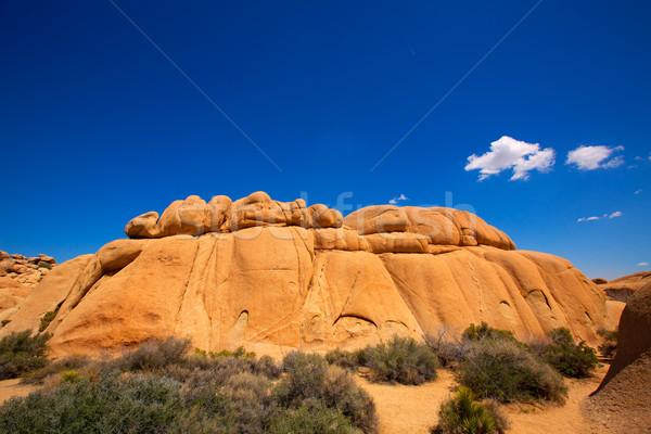 Joshua Tree National Park Jumbo Rocks Yucca valley Desert Califo Stock photo © lunamarina
