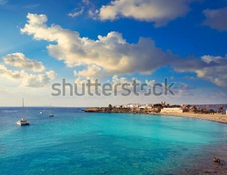 Panoramic Illetas view turquoise Formentera Balearic Stock photo © lunamarina