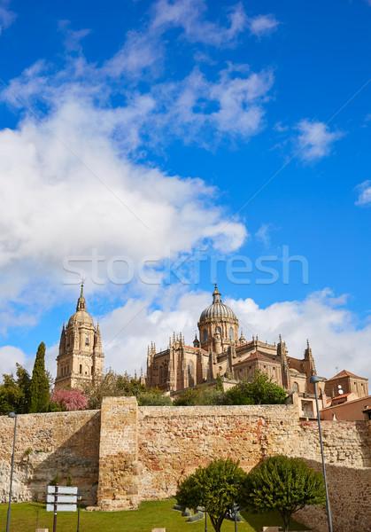 Salamanca Cathedral facade in Spain Stock photo © lunamarina