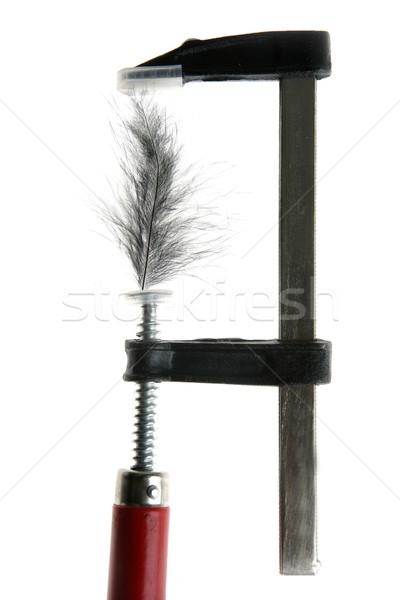 feather  under pressure Stock photo © lunamarina